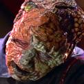, Star Trek Voyager – Staffel 1, Teil 3: Schönheit im Auge des Betrachters?