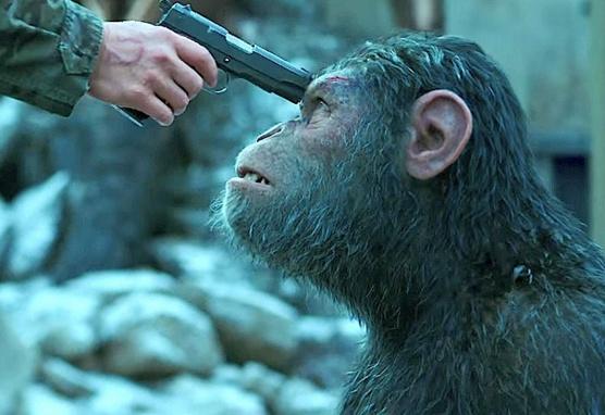 """, """"Planet der Affen – Survival"""" – Die Kritik, die den Affen laust"""
