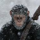 """""""Planet der Affen – Survival"""" – Die Kritik, die den Affen laust"""
